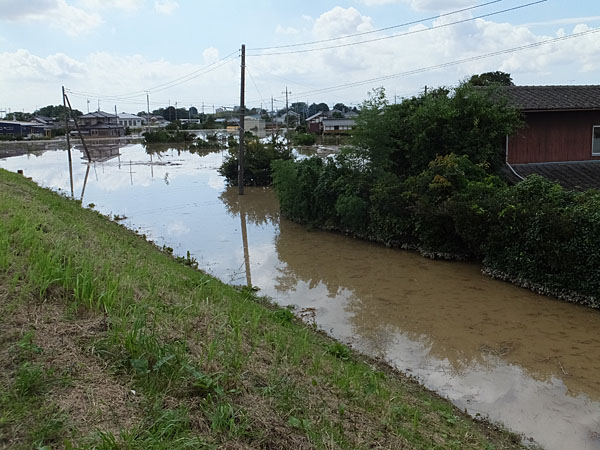小貝川沿いに立ち並ぶ住宅のほとんどが床上浸水している